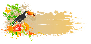tropical summer background with toucanのイラスト素材 [FYI03079115]