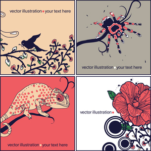 vector set of animal cards with a spider, blooming flowers and a spotted chameleon sitting on a treeのイラスト素材 [FYI03080936]