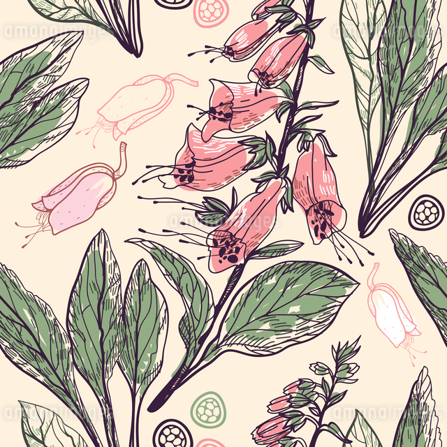 vector floral seamless pattern with blooming digitalisのイラスト素材 [FYI03082001]
