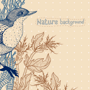 vector floral illustration of a blue bird and dry herbsのイラスト素材 [FYI03082387]