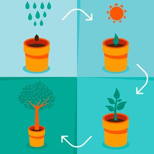 Vector growth conceptのイラスト素材 [FYI03083446]