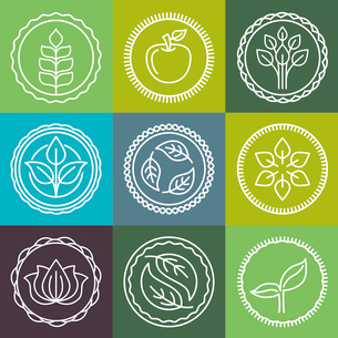 Vector abstract emblem - outline monogram - nature symbols - concept for organic shop - abstract desのイラスト素材 [FYI03084532]