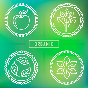 Vector abstract emblem - outline monogram - nature symbols - concept for organic shop - abstract desのイラスト素材 [FYI03084538]