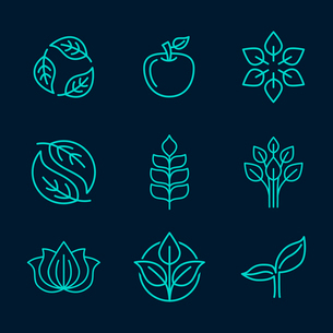 Vector abstract icons - outline monograms - nature symbols - concept for organic shop - abstract desのイラスト素材 [FYI03084539]