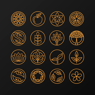 Vector abstract emblem - outline monogram - nature symbols - concept for organic shop - set of abstrのイラスト素材 [FYI03084554]
