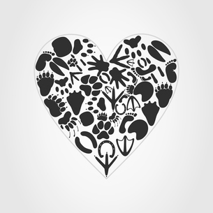 Heart of an animal. Heart collected from traces of animals. A vector illustrationのイラスト素材 [FYI03085904]