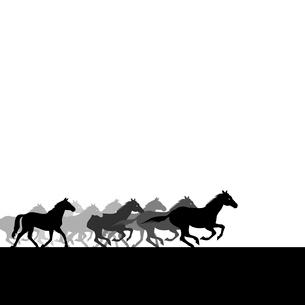 Herd of horses. Run of herd of horses across the field. A vector illustrationのイラスト素材 [FYI03085929]