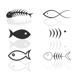 Icon of fish4. Set of icons on a theme fish. A vector illustrationのイラスト素材 [FYI03086038]