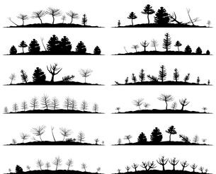 Set of landscapes of woods. A vector illustrationのイラスト素材 [FYI03086155]