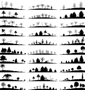 Set of landscapes of woods. A vector illustrationのイラスト素材 [FYI03086158]