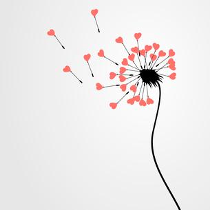 Love dandelion. From a dandelion seeds depart. A vector illustrationのイラスト素材 [FYI03086243]