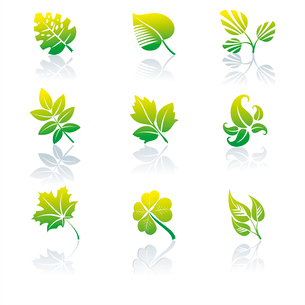 Set of green leaves logos. Vector illustration. . Green icons and graphicsのイラスト素材 [FYI03087091]