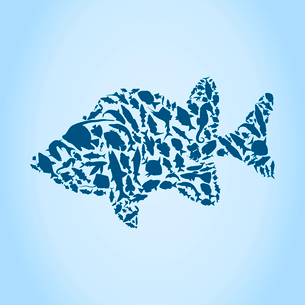Fish collected from small fishes. A vector illustrationのイラスト素材 [FYI03087342]