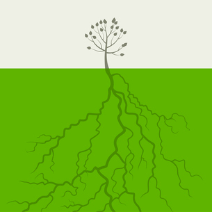 Small tree with the big root. A vector illustrationのイラスト素材 [FYI03087646]