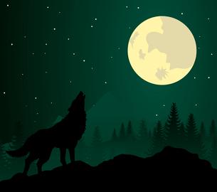 wolf2. Wild animal with burning eyes in night darkness. Vector illustrationのイラスト素材 [FYI03087781]