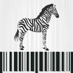 Zebra. The horse a zebra costs on a stroke a code. A vector illustrationのイラスト素材 [FYI03087827]