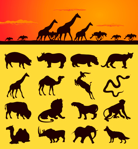 African animals2. Set of silhouettes of animals from africa. A vector illustrationのイラスト素材 [FYI03088087]