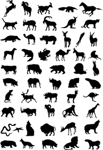 Animal. Silhouettes of animal black colour. A vector illustrationのイラスト素材 [FYI03088115]