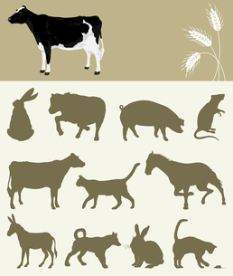 Animal of a farm. Collection of animals of a farm. A vector illustrationのイラスト素材 [FYI03088116]
