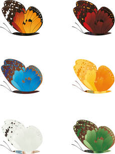 butterfly2. The beautiful butterflies of six different colours.のイラスト素材 [FYI03088555]