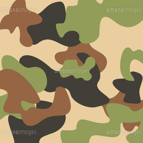 Camouflage. Structure of khaki green and brown. A vector illustrationのイラスト素材 [FYI03088564]
