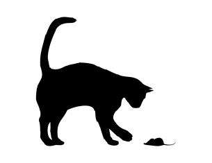 Cat and mouse. The black cat plays with a mouse. A vector illustrationのイラスト素材 [FYI03088593]
