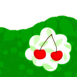 Cherry. Natural a background with a cherry. A vector illustrationのイラスト素材 [FYI03088641]