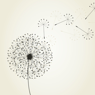 Dandelion4. From a dandelion seeds fly. A vector illustrationのイラスト素材 [FYI03088858]