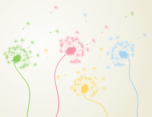 Dandelion3. Flowers dandelions also fly seeds. A vector illustrationのイラスト素材 [FYI03088862]