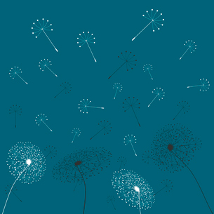 Dandelion6. From a dandelion flower seeds fly away. A vector illustrationのイラスト素材 [FYI03088863]