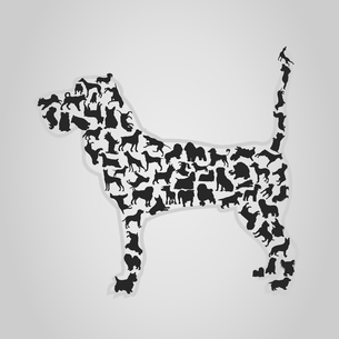 Dog2. Dog collected from set of dogs. A vector illustrationのイラスト素材 [FYI03088894]