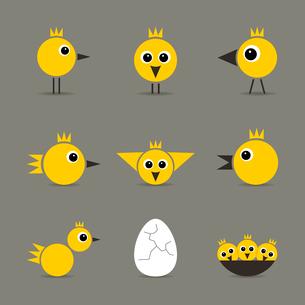 Set of yellow baby birds of hens of birdsのイラスト素材 [FYI03089229]