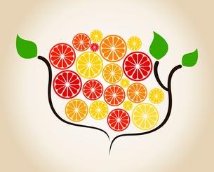 Orange on a tree branch. A vector illustrationのイラスト素材 [FYI03089253]