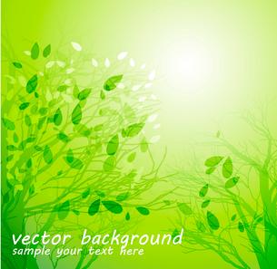 Vector illustration Season tree with green leavesのイラスト素材 [FYI03089619]