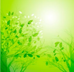 Vector illustration Season tree with green leavesのイラスト素材 [FYI03089620]
