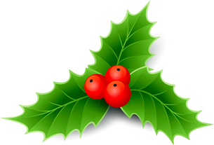 Vector illustration isolated realistic Christmas holly. EPS 10のイラスト素材 [FYI03090004]