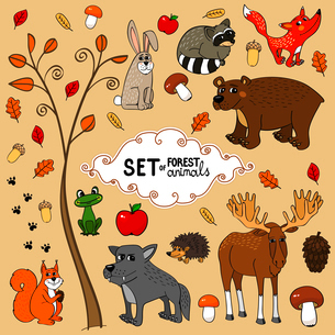 Autumn north forest animals set vector illustrationのイラスト素材 [FYI03090363]