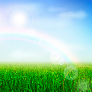 Field or meadow with green grass and rainbow vector illustrationのイラスト素材 [FYI03090389]