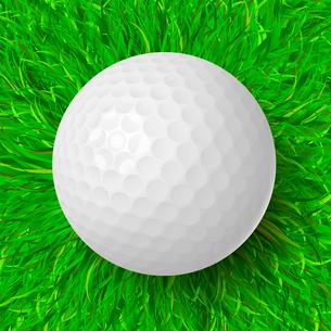 Golf ball on the green grass realistic vector illustrationのイラスト素材 [FYI03090391]