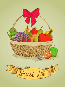 Fruit life gift basket with bow emblem vector illustrationのイラスト素材 [FYI03090732]