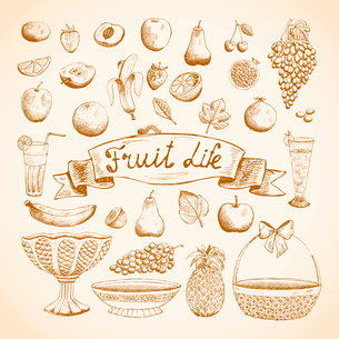 Sketches of juicy fresh fruits orange, grape, apple, strawberry, cherry and others vector illustratiのイラスト素材 [FYI03090738]