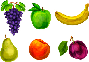 Collection of fresh organic fruits grape apple banana pear plum and peach isolated vector illustratiのイラスト素材 [FYI03091716]