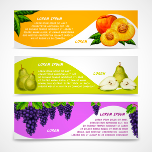 Mixed natural organic sweet fruits banners collection of pear peach and grapes for cafe dessert menuのイラスト素材 [FYI03091720]