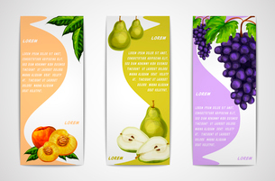 Mixed natural organic sweet fruits vertical banners collection of pear peach and grapes for cafe desのイラスト素材 [FYI03091730]
