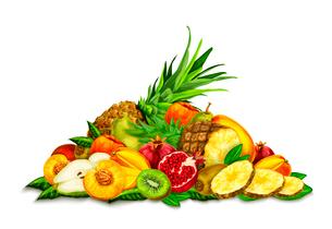 Natural organic tropical  fruits set still life with pineapple peach kiwi pomegranate pear mango vecのイラスト素材 [FYI03091734]