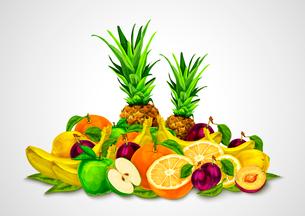Natural organic fruits set still life with orange banana pineapple apple plum lemon vector illustratのイラスト素材 [FYI03091735]