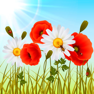 Red romantic poppy flowers white daisies and grass with ladybugs wallpaper vector illustrationのイラスト素材 [FYI03091919]