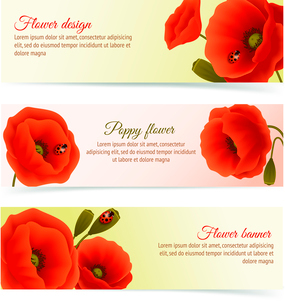 Vibrant floral horizontal banners of poppy flowers and blossoms with lady birds isolated vector illuのイラスト素材 [FYI03091926]
