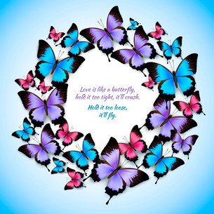 Decorative bright festive trendy colorful butterflies circle frame design pattern vector illustratioのイラスト素材 [FYI03091988]