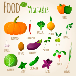 Food vegetables doodle set of pepper pumpkin broccoli onion fennel garlic vector illustrationのイラスト素材 [FYI03092030]